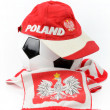 Royalty-Free Stock Photo: Polish football emblems