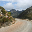 Scenic Historic Montagu Pass — Stock Photo