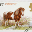 British Horse Postage Stamp — Stock Photo #6829663