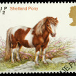 British Horse Postage Stamp — Stock Photo