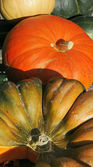 Gourds — Stock fotografie