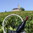 Bottle of red wine in countryside — Stock Photo