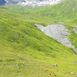 Pastures of the French Alps — Stock Photo