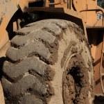 Heavy Duty Construction Equipment Tyre — Stock Photo