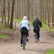Couple riding a bicycle — Stock Photo #6770858