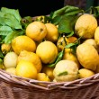 Basket with ripe lemons - Stock Photo
