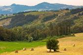 Italienische landschaft — Stockfoto
