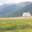 Beautiful church in alpine landscape — Stock Photo #7442546