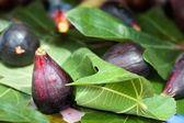 Primer plano de frutas higos — Foto de Stock