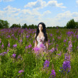 Lady in a flower meadow — Stock Photo