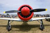 Yak propeller — Stock Photo
