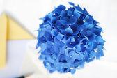 Azul Hortensia flor al lado de pluma y artículos de papelería, en un grito calmado — Foto de Stock