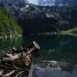 Idylle am Hinteren Gosausee — Stock Photo #7566334