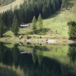 Stock Photo: Landscape at Vorderer Gosausee near Dachstein mountains