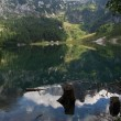 Stock Photo: Landscape at Hinterer Gosausee near Dachstein mountains
