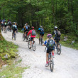 Stock Photo: Mountain bikers at Vorderer Gosausee near Dachstein