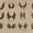 Zdjęcie stockowe: Vector set of wings
