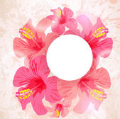 Abstract tropical background. Hibiscus flower for design. — Stock Vector