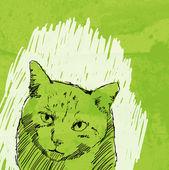 Gatto disegno vettoriale su sfondo grunge — Vettoriale Stock