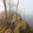 Stock Photo: Hiking trail with mist on ridge