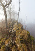 Hiking trail with mist on ridge — Stock Photo