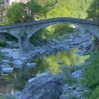 Curved Ticino stone bridge — Stock Photo