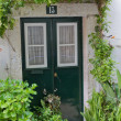 Stock Photo: Vines frame cosy entrance