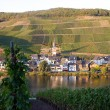 Wine growing village — Stock fotografie