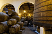 Aging Port wine in cellar — Foto de Stock