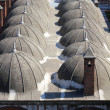 Stock Photo: Cupolas of mosque roof