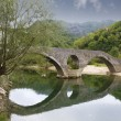 Stock Photo: Old bridge in RijekCrnojevica, Montenegro