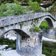 Historic curved stone bridge — Stockfoto #7798199