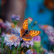Butterfly on flower — Stock Photo #7011859