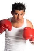 Boxer — Fotografia Stock
