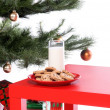 Milk and Cookies — Stock Photo #6868517