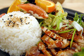 Teriyaki Chicken Plate — Stockfoto