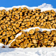 Stacked pile of firewood - Stock Photo