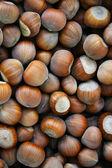 Hazelnuts Tonda — Stock Photo