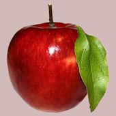 Fresh red apple — Stockfoto