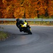 Biker in autumn - Stock Photo