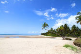 Beach of Bahia — Stock Photo