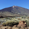 The conical volcano Mount Teide - Zdjęcie stockowe