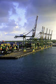 Cranes at Colon Panama — Foto Stock
