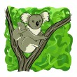 Koala family — Vector de stock