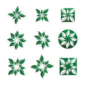Leaf and Flower Vector Illustrations — Stock Vector