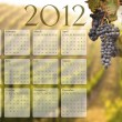 2012 Calendar with Grape Vineyard Background — Stock Photo #6842817