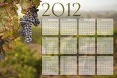 2012 kalender met druiven wijngaard achtergrond — Stockfoto