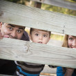 Happy Young Mixed Race Ethnic Family Looking Through Fence — Stock Photo