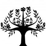 Olive tree — Stock Vector