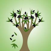 Olivo — Vettoriale Stock